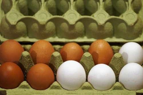 Eggs Plato Fresh Chicken Raw Series White Brown