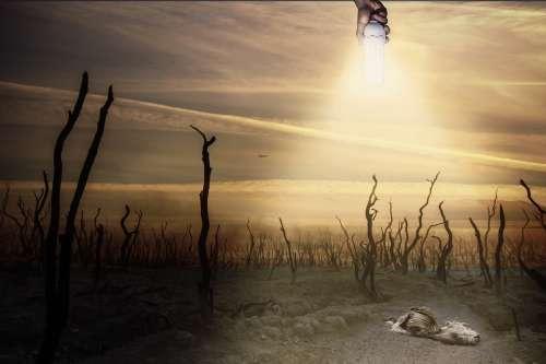 Environment Chemtrails Dead Death Sky Sun Die