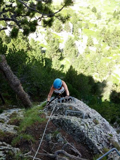 Escalation Rock Top Mountain Sport Tree Forest