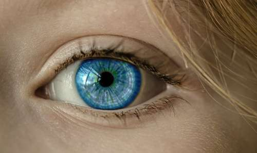 Eye Blue Eye Iris Pupil Face Close Up Lid
