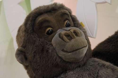 Face Gorilla Monkey Teddy Bear Steiff Soft Toy