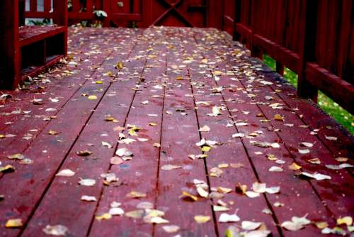 Fall Deck Wood Leaves Platform Season Outdoor