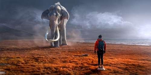 Fantasy Landscape Elephant Man Composing Mystical