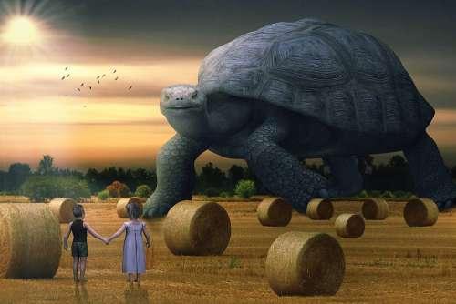 Fantasy Landscape Hay Bales Turtle Children Sun