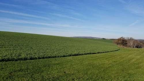 Farm Dane County Farmers Dane Wisconsin Healthy