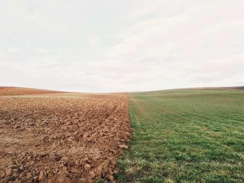 Farmland Meadow Field Border Sharp Countryside
