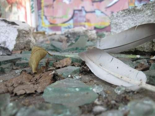 Feather Glass Splitter Shard Dirt Destroyed