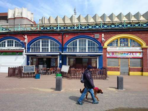 Ferry Terminal Brighton Pedestrians Walking The Dog
