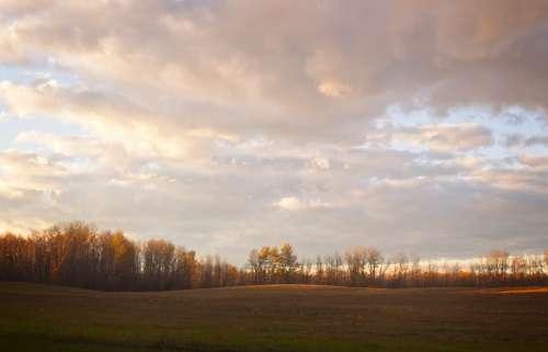 Field Sky Forest Landscape Clouds Sunset Nature