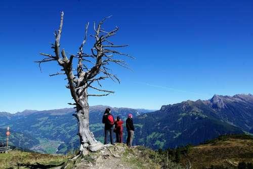 Finkenberg Austria Mountain Hike Holidays Nature