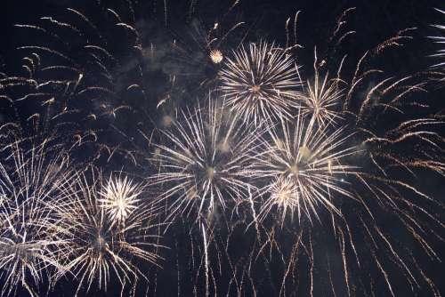 Fireworks Golden Fireworks Sky Night
