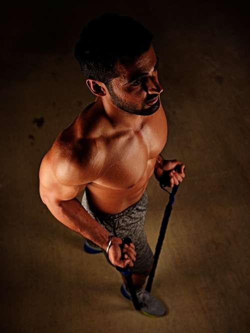 Fit Fitness Gym Gym Equipments Indian Workout