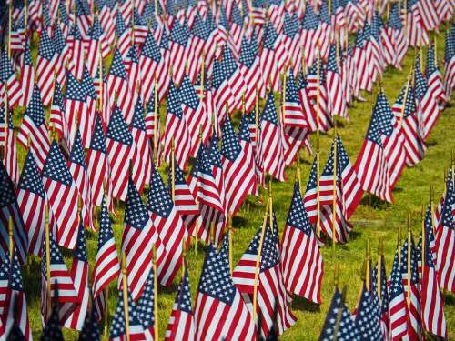 Flag Usa Patriotic America Stripes States United