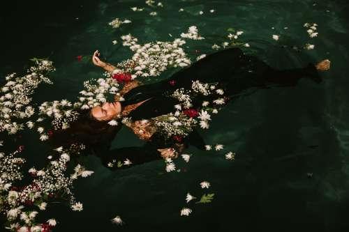 Floating Flowers Petals Swimming Swimming Pool