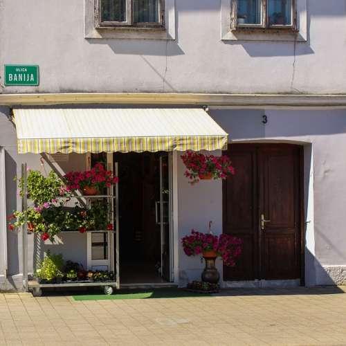 Flower Store Store Flower Shop Retail Floral