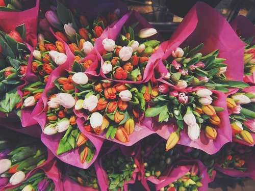 Flowers Tulips Bouquet Bouquet Of Flowers Floral