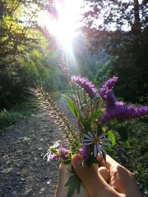 Flowers Beauty Haetssal