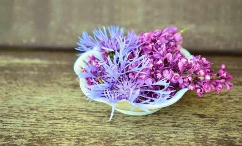 Flowers Flower Bowl Wood Tender Decoration