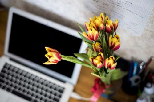 Flowers Computer Laptop Keyboard Workplace