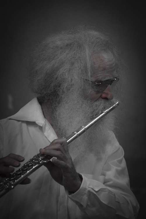 Flutist Musician Instrument Sound Art Man Music