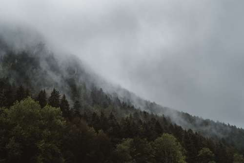 Fog Haze Forest Foggy Landscape Mist Mountain