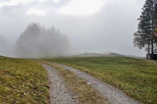 Fog Landscape Trees Haze Hill Hiking Mood Nature