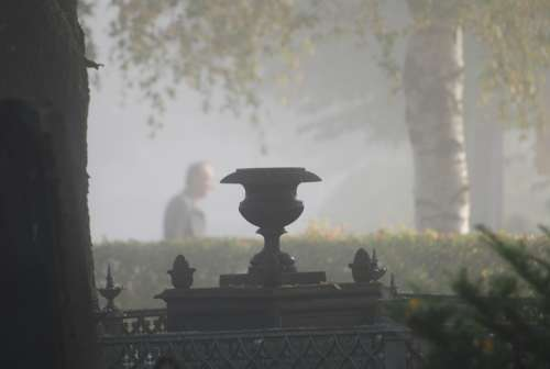 Fog Cemetery Light Atmosphere