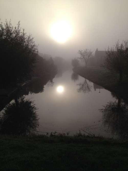Fog Sun Water Trees