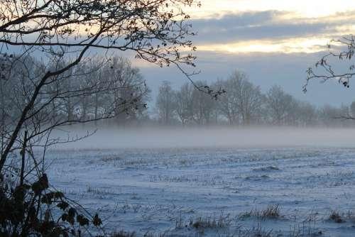 Fog Winter Fog Bank Dusk Snow Landscape Nature