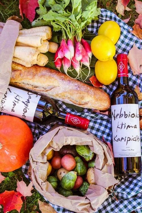 Food Picnic Bread Wine Parsnips Radishes Lemons