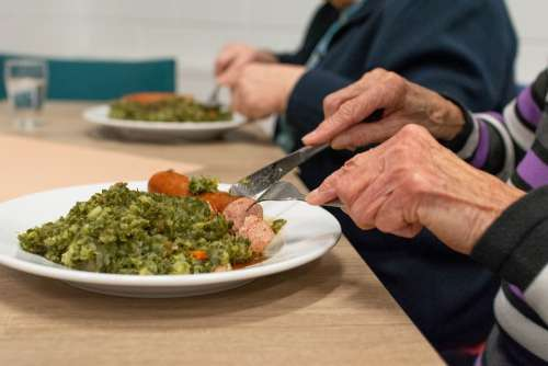 Food Meal Kale Hand Woman Adult Hands Elderly