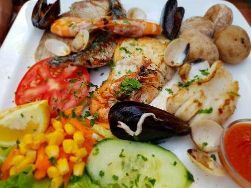 Food Fish Shellfish Delicious Meal Fresh Kitchen