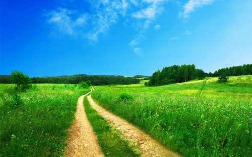 Footpath Pathway Rural Green Road Nature Sky