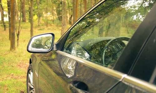 Forest Walk Woods Auto Mercedes Glass Car