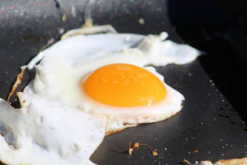 Fried Fry Pan Egg Protein