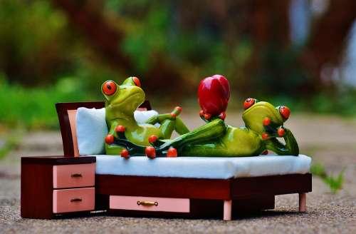 Frog Love Bed Bedside Table Heart Figure Funny