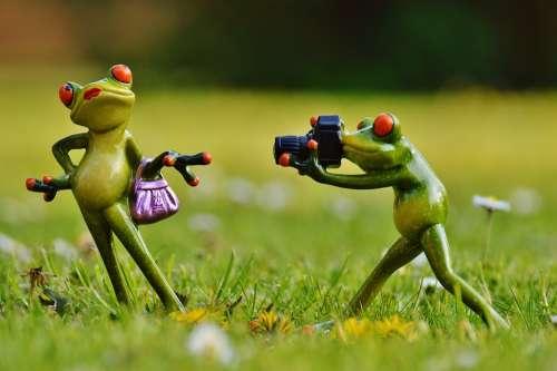Frog Photographer Model Photo Model Lady Posing