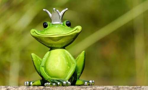 Frog Frog Prince Prince Figure King Cute Funny