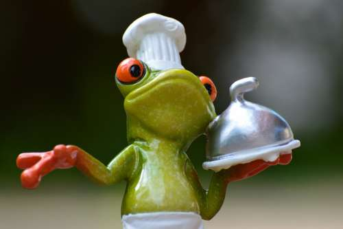 Frog Cooking Eat Kitchen Gourmet Food Preparation
