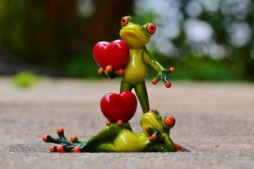 Frogs Pair Love Valentine'S Day Pose Heart Funny