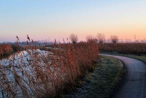 Frozen Sunrise Reed Rose Landscape Fog Channel