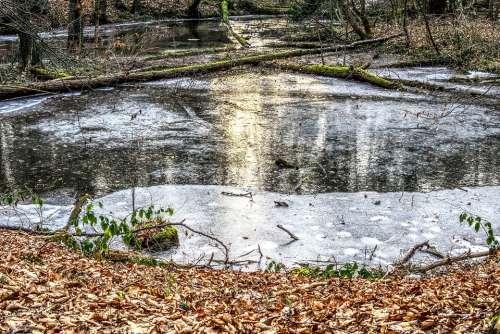 Frozen Lake Ice Ice Rink Cold Sun Mirroring