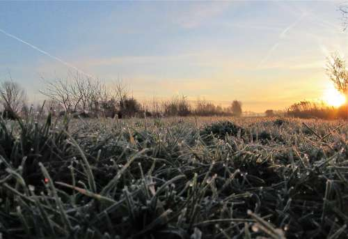 Frozen Sunrise Drops Grass Countryside Winter