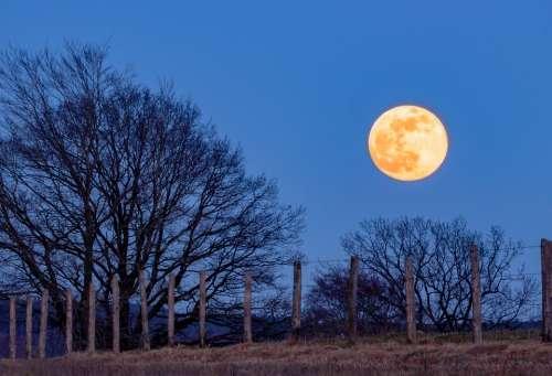 Full Moon Super Moon Moon Blue Hour Moonlight Sky
