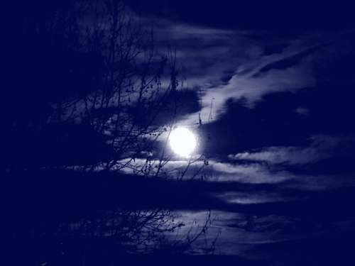 Full Moon Clouds Branches Tree Night Sky Flare