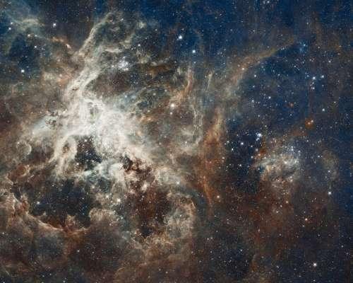 Galaxy Star Tarantula Nebula 30 Doradus Ngc 2070