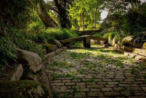 Garden Stone Garden Green Nature Spring Stones