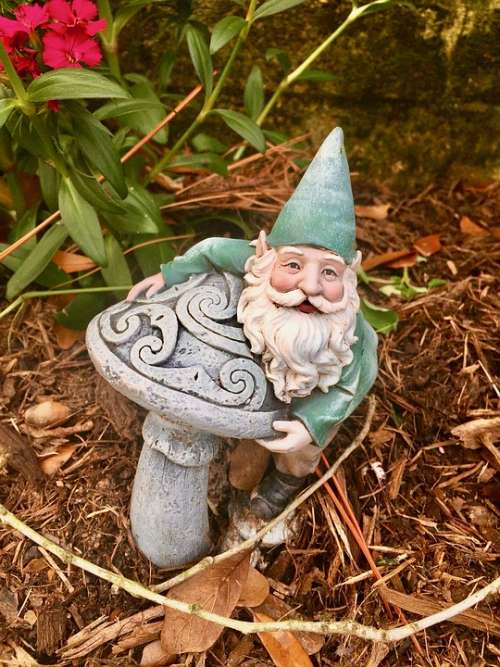 Garden Flowers Gnome Plant Red Green Leaves