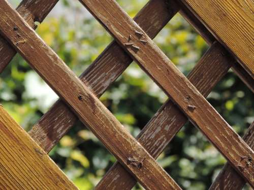 Garden Fence Wooden Slats Wood Wood Fence Paling