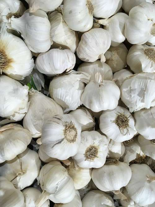 Garlic Grocery Groceries Market Healthy Nutrition